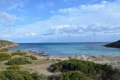 Asinara Danza e Paesaggio – Workshop Residenziale di danza in natura